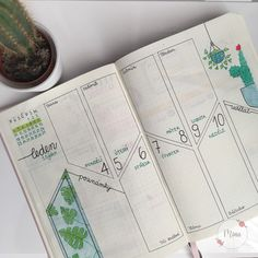 #leuchtturm #myleuchtturm #bulletjournal #cactus #monstera #diary #inspiration #mina #minagraphicdesign #illustration #january #2021 #drawing #czech #mywork #green