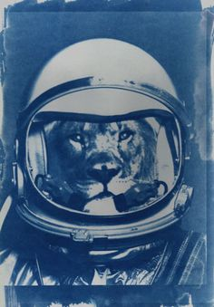 Léon Grellutch, the first ever belgian cosmonaut