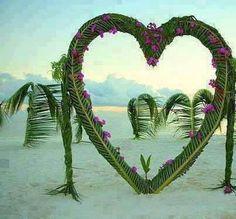 heart palmbomen
