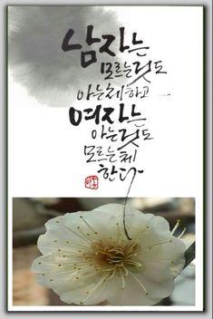 하남,강동구캘리-폭풍업뎃합니다. : 네이버 블로그 Idioms, Best Quotes, Lettering, Thoughts, Wisdom, Sayings, Words, Flowers, Plants