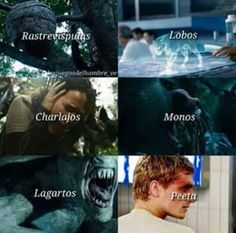 Quote Aesthetic, Hunger Games, Movie Posters, Movies, Hunger Games Humor, Libros, The Hunger Games, Films, The Hunger Game