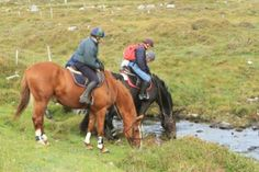 Work was never like this! Connemara Equestrian Escapes will help blow away the cobwebs and send you and horse home refreshed Riding Holiday, Ireland Holiday, Connemara, Horse Riding, Horseback Riding, Equestrian, Horses, Holidays, Animals