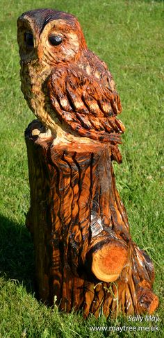 Tawny Owl wooden chainsaw sculpture by Sally May. This one is currently situated at the Cat Survival Trust in Welwyn, Hertfordshire.