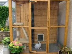 Natural wood cat enclosure.