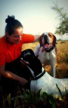 Κυνήγι με Πόιντερ. Γεωργία Μέκκου. Hunting Pointer. Georgia, Dogs, Animals, Animales, Animaux, Animal Memes, Animal, Pet Dogs, Dog