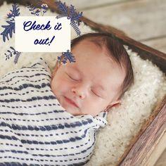 CP Photography Winter 2019 Newsletter #newborn #newbornphotography #babies #babyphotography #photoshoots #bostonphotographer #massachusettsphotographer
