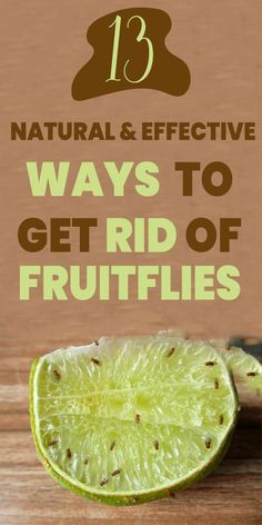 Get rid of fruit flies quickly with these ideas and ways to get rid of fruit flies. And whats the other advantage? All of these are natural ways to get rid of flies. #getridofflies #flies #pests #killflies #killpests Weekly Cleaning, Household Cleaning Tips, Cleaning Hacks, Fruit Fly Repellent, Fly Repellant, Bug Control, Pest Control, Rotten Fruit, Freezing Fruit