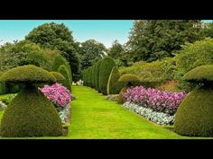 The Most Beautiful Gardens in the World. Thanks for watching MUSIC: Green Leaves by Audionautix is licensed under a Creative Commons Attribution license (htt. Garden Art, Topiary Garden, English Garden, Most Beautiful Gardens, Topiary, Garden Planning, Diy Backyard, Alice In Wonderland Garden, Beautiful Gardens