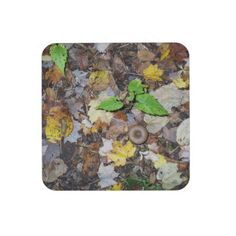 """Forest Leaves Coaster!  #Set of 6, 3.8"""" #square #coasters!  Feel free to #customize!  To learn more visit www.zazzle.com/dww25921"""