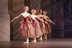 Nutcracker - Waltz of the Flowers The Australian Ballet. Dance Costumes Ballet, Ballet Tutu, Ballet Dance, Nutcracker Costumes, Tutu Costumes, Costume Ideas, Ballet Shows, Ballet Russe, Australian Ballet