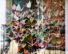 I love the meaning of paper cranes at weddings!!! Folding 1000 cranes though is a serious labor of love :)  http://weddingtraditions.about.com/od/MarriageTraditions/fl/Folding-1000-Wedding-Paper-Cranes.htm