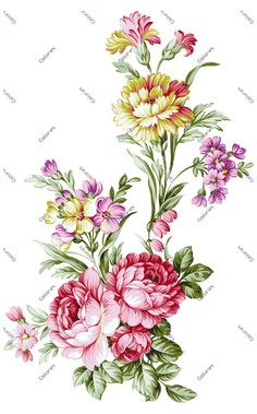Folk Art Flowers, Birth Flowers, Bunch Of Flowers, Botanical Flowers, Flowers Nature, Floral Flowers, Beautiful Flowers, Flower Art Images, Flower Art Drawing