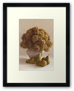 Dried Hydrangeas And Pears Still Life  by Sandra Foster