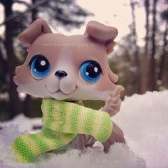 Littlest Pet Shop Lps Littlest Pet Shop, Little Pet Shop Toys, Little Pets, Lps Dog, Lps Cats, Lps For Sale, Toy Sale, Cute Animal Memes, Cute Animals