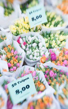 tulpen auf dem markt in amsterdam