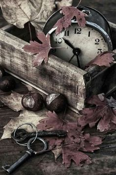 Add foliage nuts old clock to weathered wood box for easy decor Diy Pallet Projects Add Box Clock Decor Easy foliage Herbs Herbst nuts weathered Wood Autumn Day, Autumn Leaves, Autumn Harvest, October Fall, Hello October, Time For Change, Old Clocks, Weathered Wood, Nature Photography
