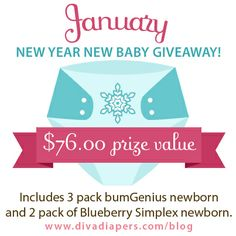 New Year New Baby Giveaway! 5 Newborn Cloth Diapers #bumGenius #Blueberry  (ENDS 1/31/2014)