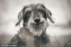 Big Smile by Jessica Lipki, via 500px
