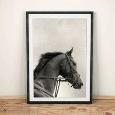 Horse Print Horse Photo Black and White Photography by shakarts