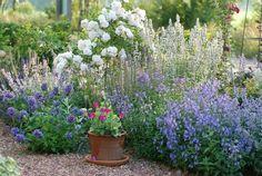 Ton ter Linden, painter and garden designer; - Google Search