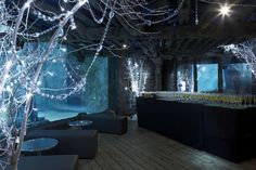 Shared Christmas Parties at Sea Life London Aquarium!