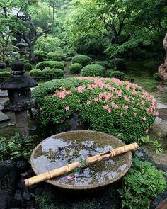 128 Best Anese Garden Elements