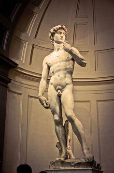 Statue of David, Galleria dell'Accademia (Firenze, Italy)