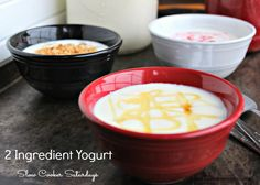 2-Ingredient-Yogurt.jpg (561×400)