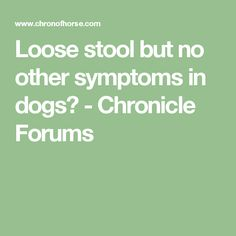 Loose stool but no other symptoms in dogs? - Chronicle Forums