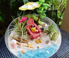 Beach Terrarium Kit ~ Bowl Air Plant Terrarium Kits ~ Beach Umbrella and Beach Chair ~ Margarita ~ Coastal Living Beach Decor ~ Gift Air Plant Terrarium, Garden Terrarium, Succulents Garden, Terrarium Kits, Beach Fairy Garden, Summer Garden, Mini Mundo, Palm Trees Beach, Beach Gardens