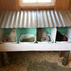 Chicken Coop - - nesting boxes with removable tubs Building a chicken coop does not have to be tricky nor does it have to set you back a ton of scratch. Cute Chicken Coops, Diy Chicken Coop Plans, Chicken Coop Designs, Backyard Chicken Coops, Building A Chicken Coop, Chickens Backyard, Chicken Feeders, Chicken Coop From Pallets, Inside Chicken Coop