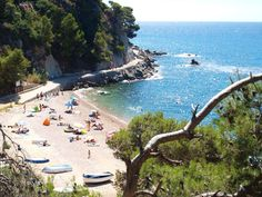 Outdoor Life, Costa, Camping, World, Beach, Water, Travel, Calla Lilies, Outdoor Living