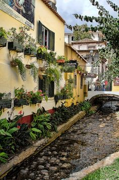 The old area, Funchal, Madeira Island - Portugal  http://www.travelandtransitions.com/destinations/destination-advice/europe/madeira-portugal/