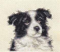 BORDER COLLIE PUPPY ~ DOG ~ Full counted cross stitch kit with all materials   | eBay