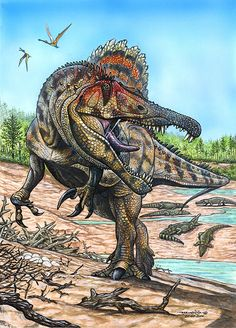 Oxalaia quilombensis; Cretaceous (Early Cenomanian, 98 Ma); Theropod (spinosauridae); Described by Kellner et al., 2011