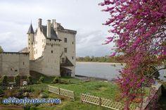 Montsoreau Castle-Loire Valley http://allonfrance.com/road-trip-to-the-loire-valley/