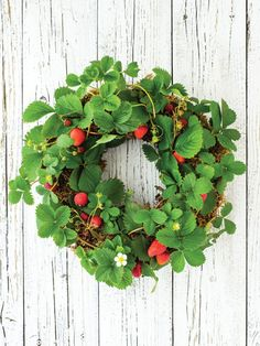 Living Wreaths - Vertical Gardens - Country Living