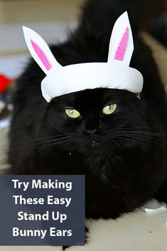 Easter Crafting: How to make Stand up Bunny Ears , easy DIY project for kids, adults, and maybe even pets! Diy Projects For Kids, Craft Activities For Kids, Craft Projects, Crafts For Kids, Kitten Costumes, Pet Costumes, Easter Cats, Happy Easter, Bunny Ears Template