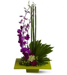 Zen Artistry TFWEB384 This artistic arrangement of exotic, vivid purple Mokara orchids – perfectly placed against a tableau of burgundy and chartreuse blossoms, equisetum stalks, leaves and moss – will be a fresh, calming floral influence in any environment. Lovely in a home, and stunning in an office.  by 4165flowers.com