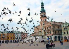Zamosc The Beautiful Country, Central Europe, My Heritage, Our World, European Travel, Homeland, Polish Language, City, Languages