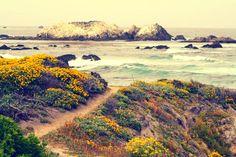 vacation to Pebble Beach, California