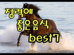 정력에 좋은음식 best 7 - YouTube