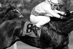 Andre Gartner: Horse Racing München