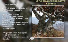 #ReviewParty Delrai Edizionii:  Review Party!!! --- IL TUO SORRISO CONTROVENTO di Elle Eloise