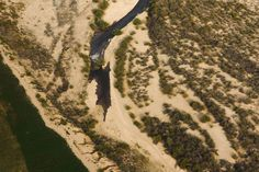 Pulses of Water Bring Life to the Famished Colorado River | Audubon
