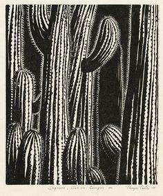 'Saguaro, Sabino Canyon AZ' (2008) by American artist & printmaker Thayer Carter (b.1942). Woodcut print on paper. via the artist's site Wood Engraving, Linocut Prints, Woodcut Art, Art Prints, Block Prints, Art Inspo, Linoprint, Scratchboard, Cactus Art