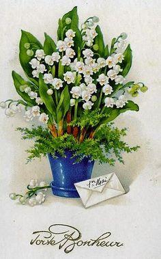 carte muguet imprimer gratuit 768 Best Floral Illustrations images | Floral illustrations