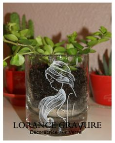 Gravure Crea Nature sur verre