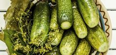 Nakládané okurky bez sterilizace - VařímeDobroty.cz Pickling Cucumbers, Friend Birthday Gifts, Cooking Light, Love Food, Pickles, Cooking Recipes, Yummy Food, Vegetables, Cooking