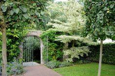 Resultado de imagem para o jardim secreto Arch, White Trees, Outdoor Structures, Secret Gardens, Garden, Longbow, Wedding Arches, Bow, Arches